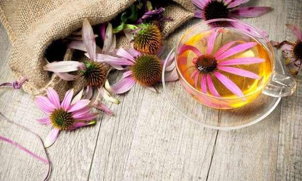 17731 Bitki Çayları ile Bitkisel Tedavi Yöntemleri