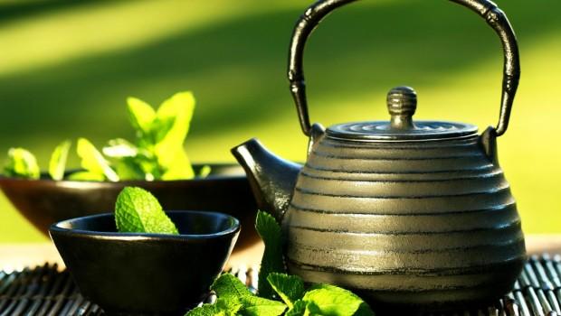 ender-saraç-zayıflama-çayı Bitki Çayları ile Bitkisel Tedavi Yöntemleri