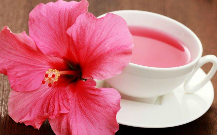 hibiskus-cayi Bitki Çayları ile Bitkisel Tedavi Yöntemleri