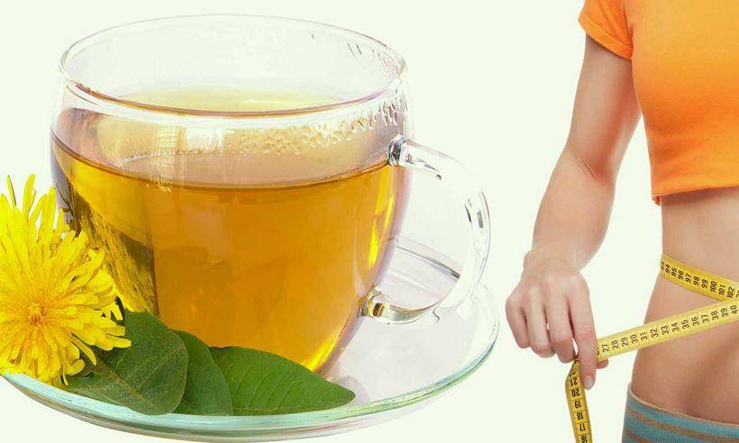 kilo-vermek-icin-karahindiba-cayi Bitki Çayları ile Bitkisel Tedavi Yöntemleri