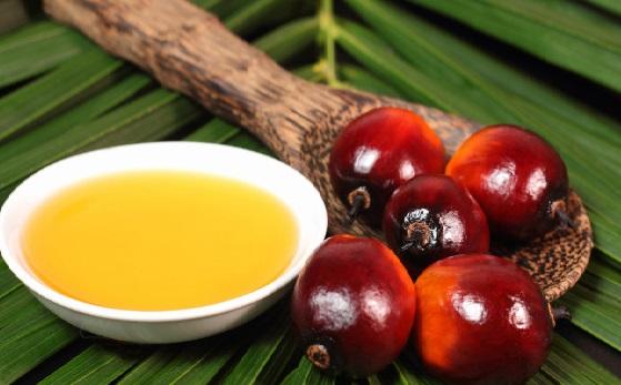 1456949997_palmovoe-maslo Palm Yağı Nedir ? Palmiye Yağı Zararları Nelerdir?