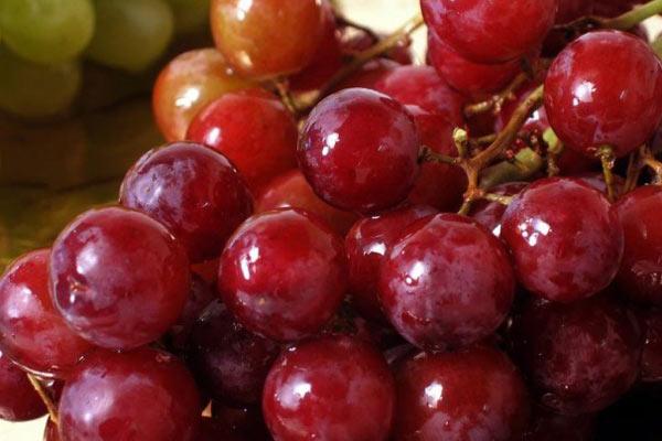 kırmızı-üzüm Yağ Yakıcı Yiyecekler ve Metabolizma Hızlandırıcı Besinler