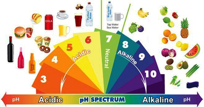 alkali-diyeti Alkali Diyeti