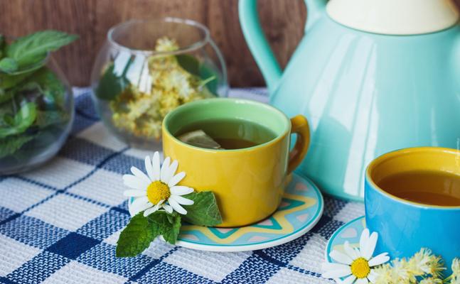 bitki-caylari-kilo Zayıflama Çayları İsimleri ve Tarifleri