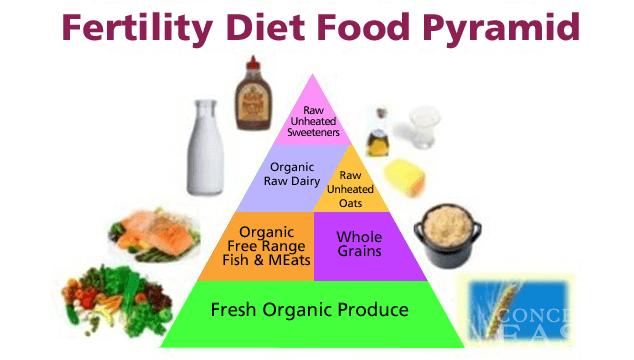 fertilite-surecini-iyilestirecek-fertilite-diyeti-1 Fertilite Diyeti