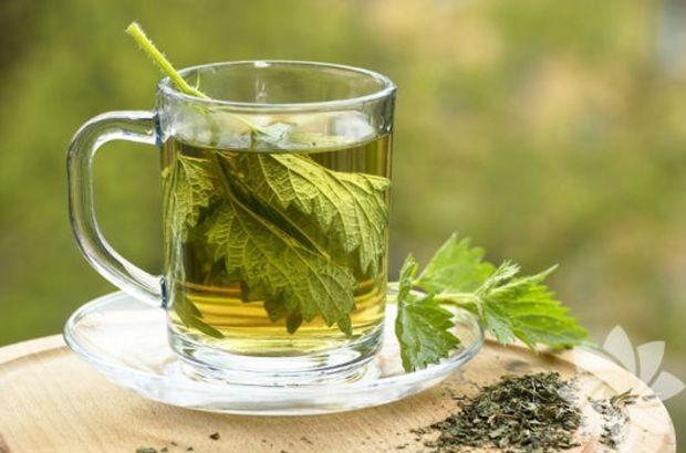 maydanoz-çayı Zayıflama Çayları İsimleri ve Tarifleri