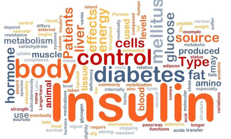 Tip-II-Diyabet-ve-Insulin-Direnci-yeni Kilo Aldıran Hastalıklar Nelerdir?