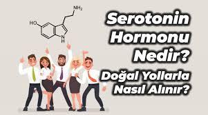 indir-2-1 Serotonin Hormonu Nedir ve Hangi Besinlerde Bulunur?